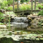 2-bush_s_garden_085