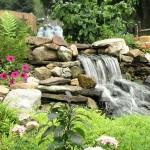 2-bush_s_garden_130